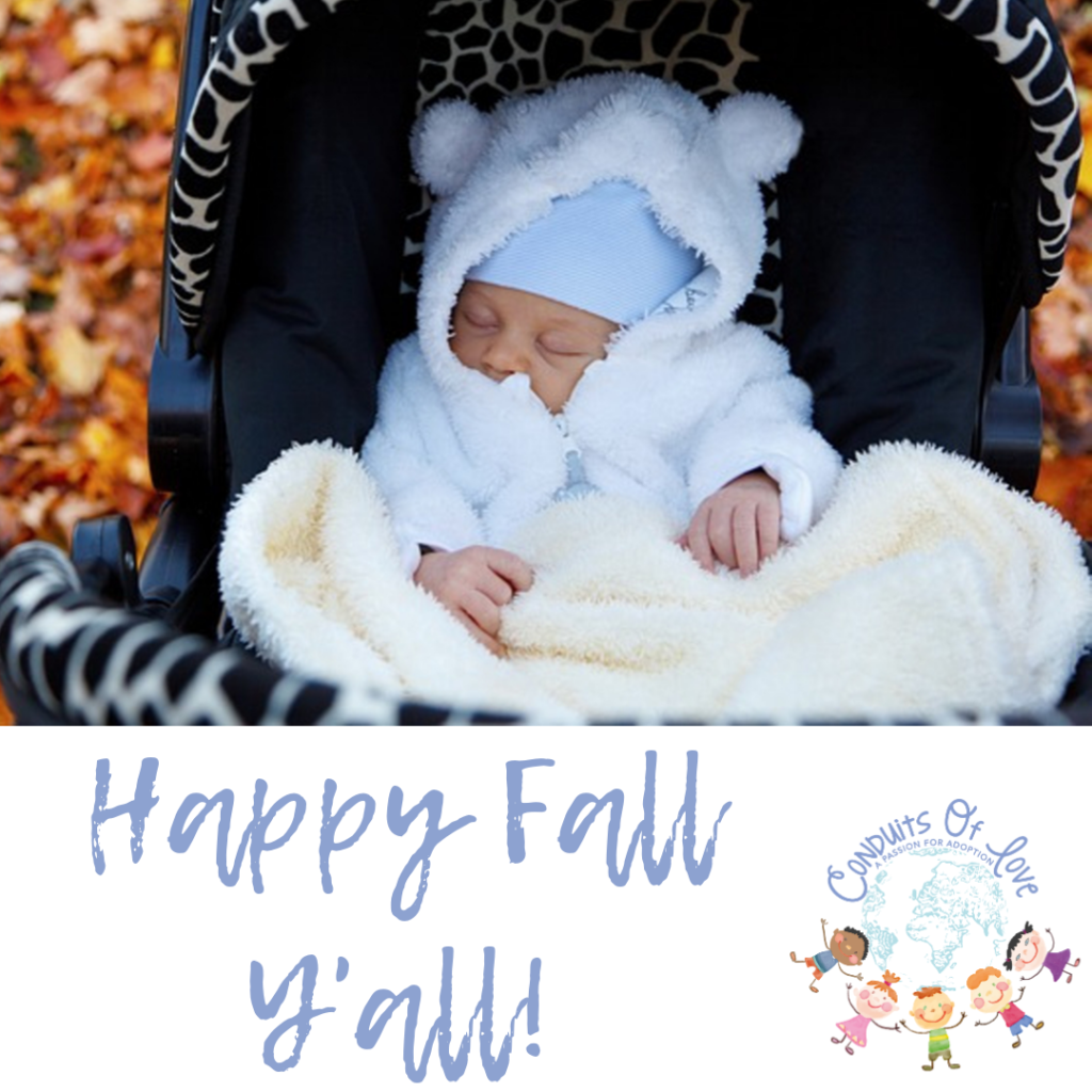 Happy Fall Y'all! Blog